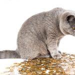 ペルーの通貨は?ペルー旅行では偽札注意!ドルは使える?