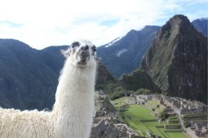 ペルー、旅行