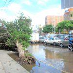 南米・ペルーでエルニーニョの大雨が我が家に直撃!浸水、洪水!両隣の家は倒壊!
