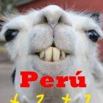 ペルー、あるある、海外