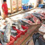 ペルー・チクラーヨ・サンホセの浜辺で新鮮でおいしいお魚を直接買えるんです!