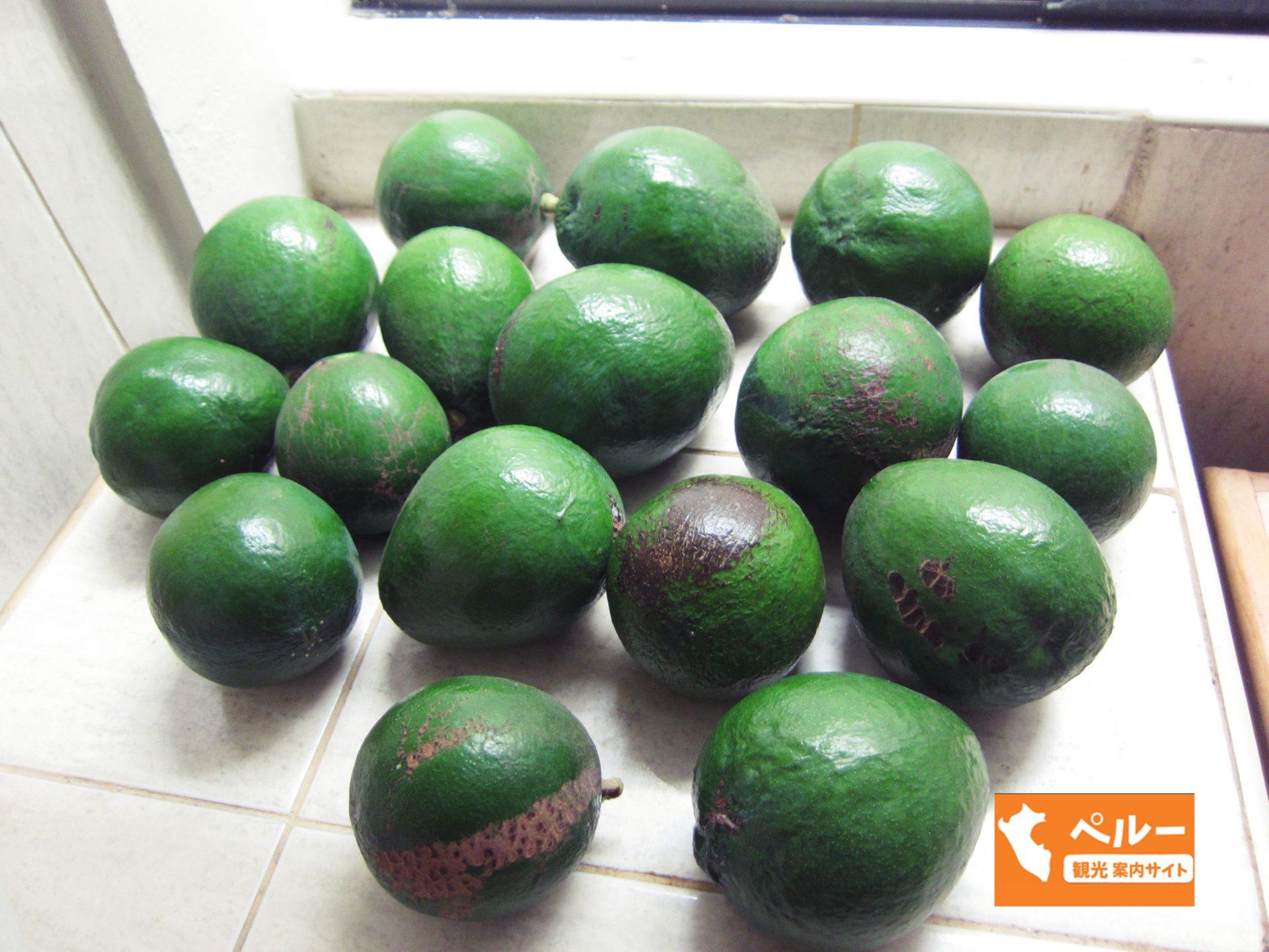 南米, ペルー, アボガド, 果物