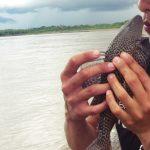 ペルー隠れ観光スポット!アマゾン河の街の市場がすごい!アマゾン河の魚でペルー料理!ロレート県 Loreto Yurimaguas