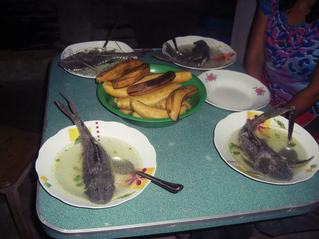 ペルー、観光スポット、ジャングル、ペルー料理