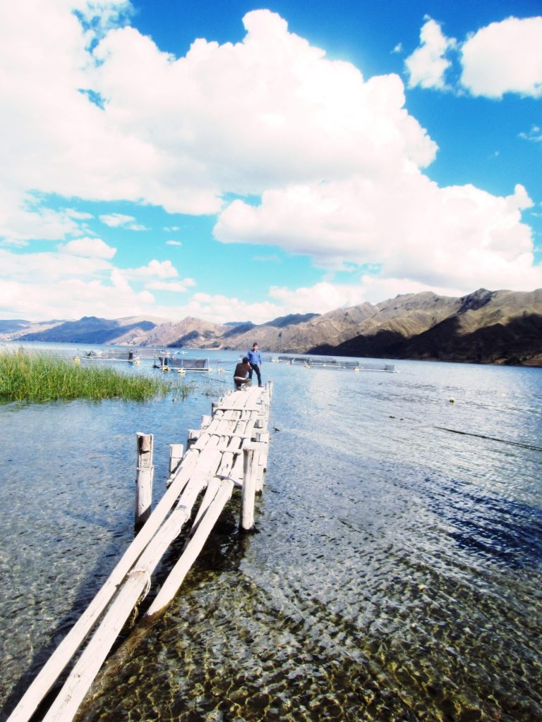 ペルー、クスコ、観光スポット、ペルー料理、トゥルーチャ