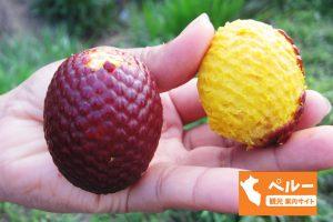 ペルー、果物、フルーツ、アグアヘ