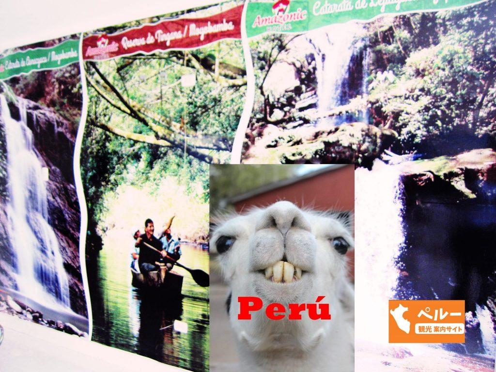 ペルー、ホテル、宿泊、モヨバンバ