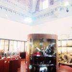 ペルー・クスコの観光スポット・自然史博物館 Museo de Historia Natural!ペルーの動物・昆虫の標本がいっぱい!