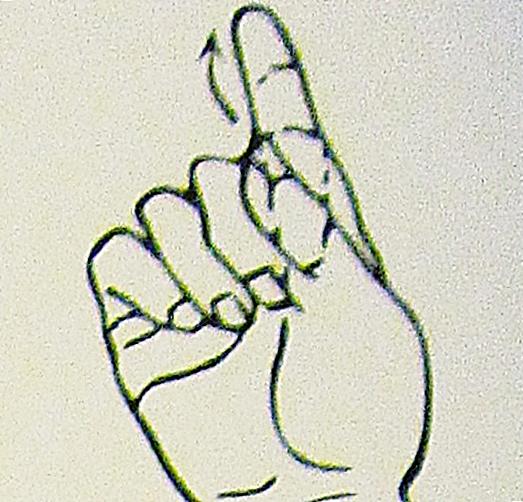ペルー, 言語, 手話, 11