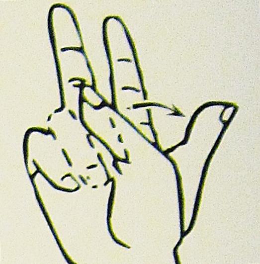 ペルー, 言語, 手話, 13