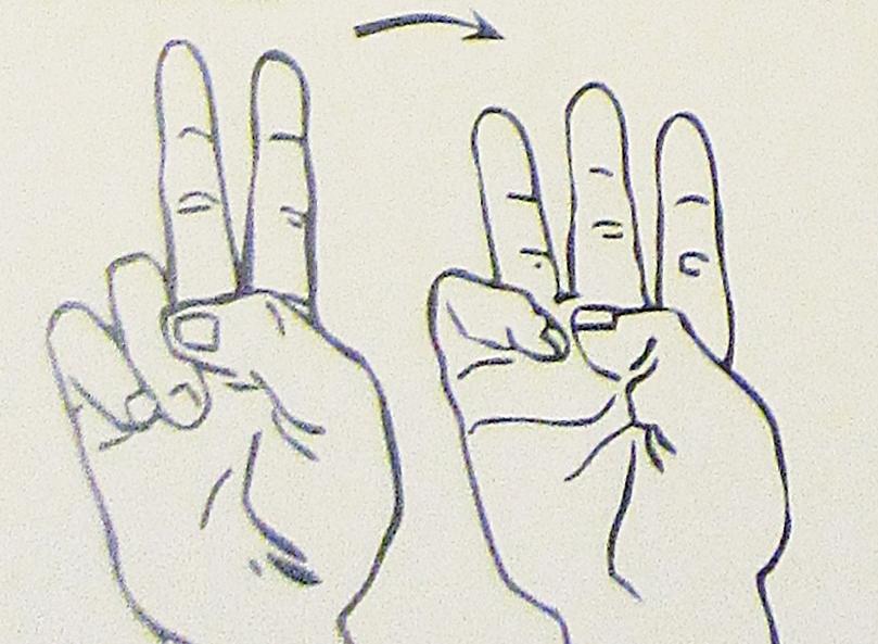 ペルー, 言語, 手話, 26