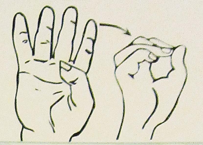 ペルー, 言語, 手話, 40