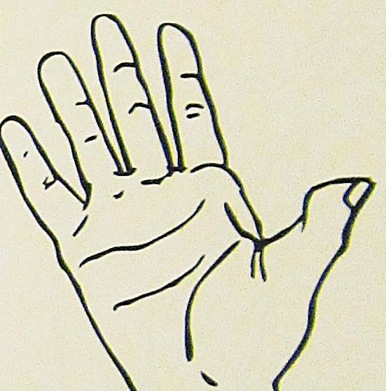 ペルー, 言語, 手話, 5