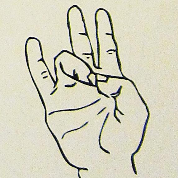 ペルー, 言語, 手話, 7
