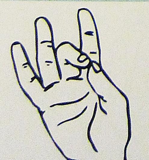 ペルー, 言語, 手話, 8