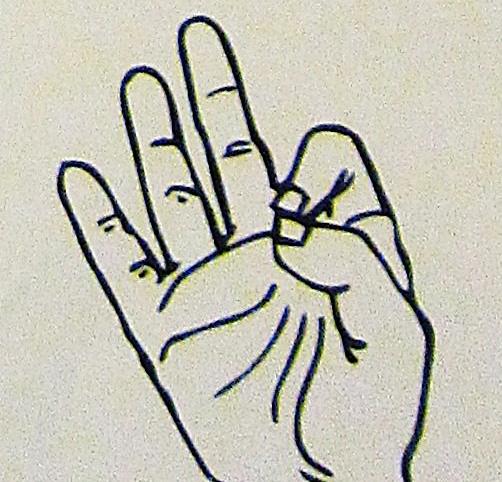 ペルー, 言語, 手話, 9