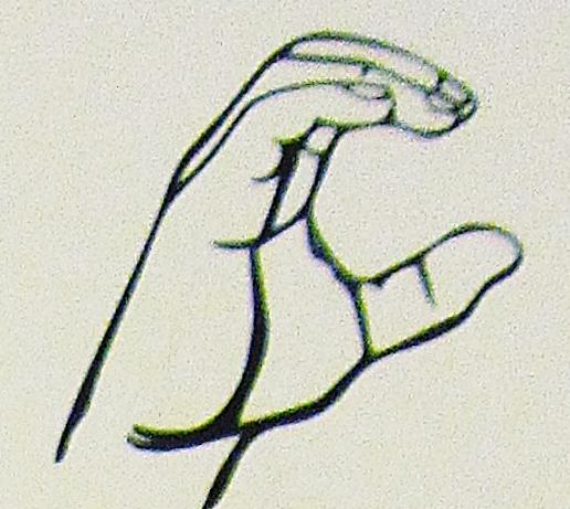 ペルー, 言語, 手話, C