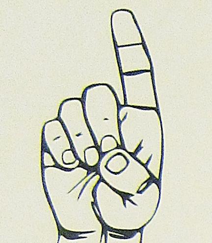ペルー, 言語, 手話, D