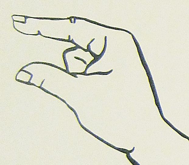 ペルー, 言語, 手話, G