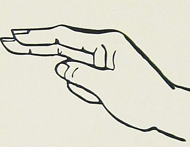 ペルー, 言語, 手話, H