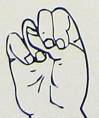 ペルー, 言語, 手話, N
