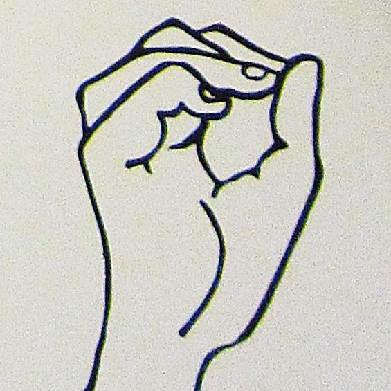 ペルー, 言語, 手話, O