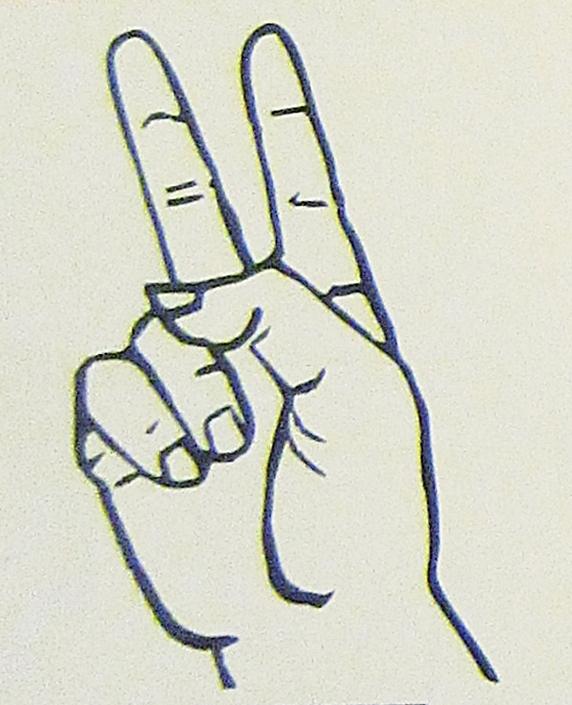 ペルー, 言語, 手話, V