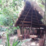 マチュピチュ遺跡の麓にあるマチュピチュ植物園は、知られていないレア観光スポットだが、知られていない理由が行ってみてわかった
