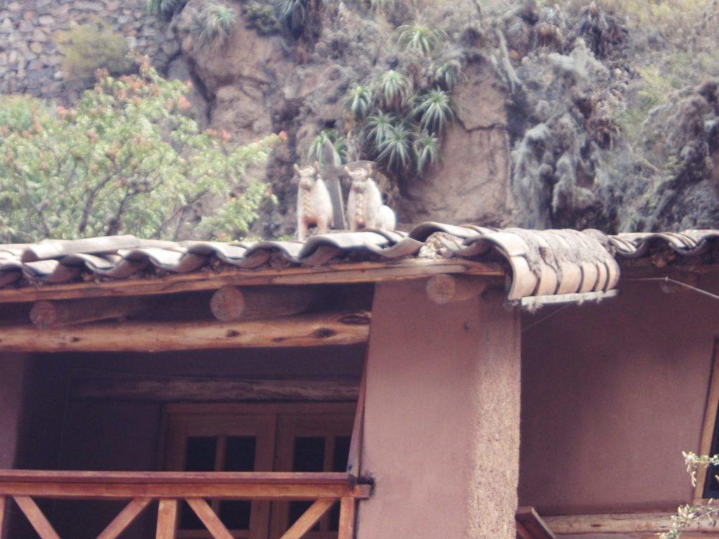 ペルー, クスコ, 習慣, 伝統, 文化