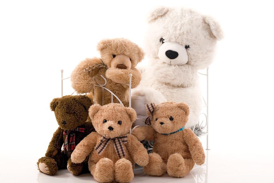 ぬいぐるみ, クマ, プレゼント, ペルー人, 女性