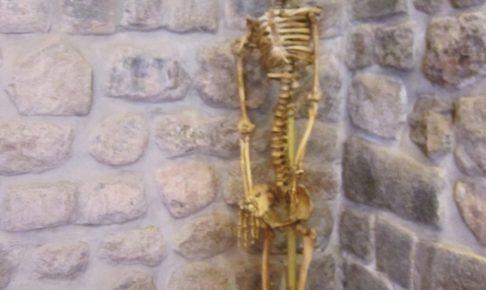 ペルー, クスコ, 博物館, 墓