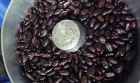 南米, アマゾン, ジャングル, 熱帯雨林, ペルー, チョコレート, カカオ