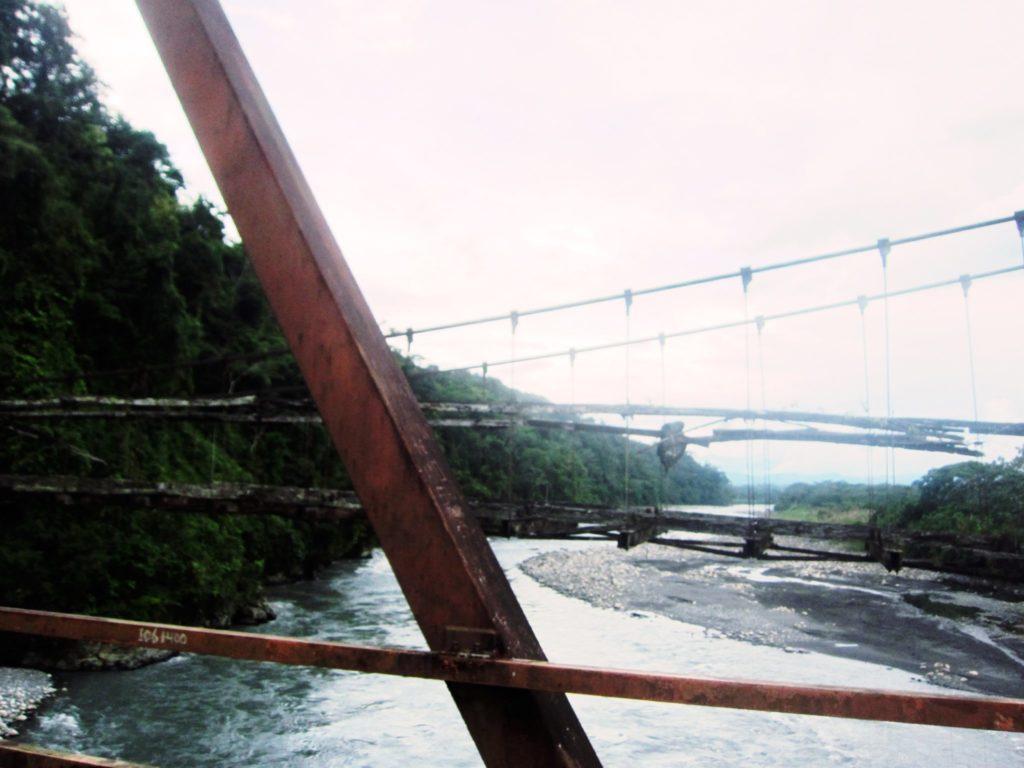 アマゾン, ジャングル, ペルー, マヌー, 国立公園, Pillcopata