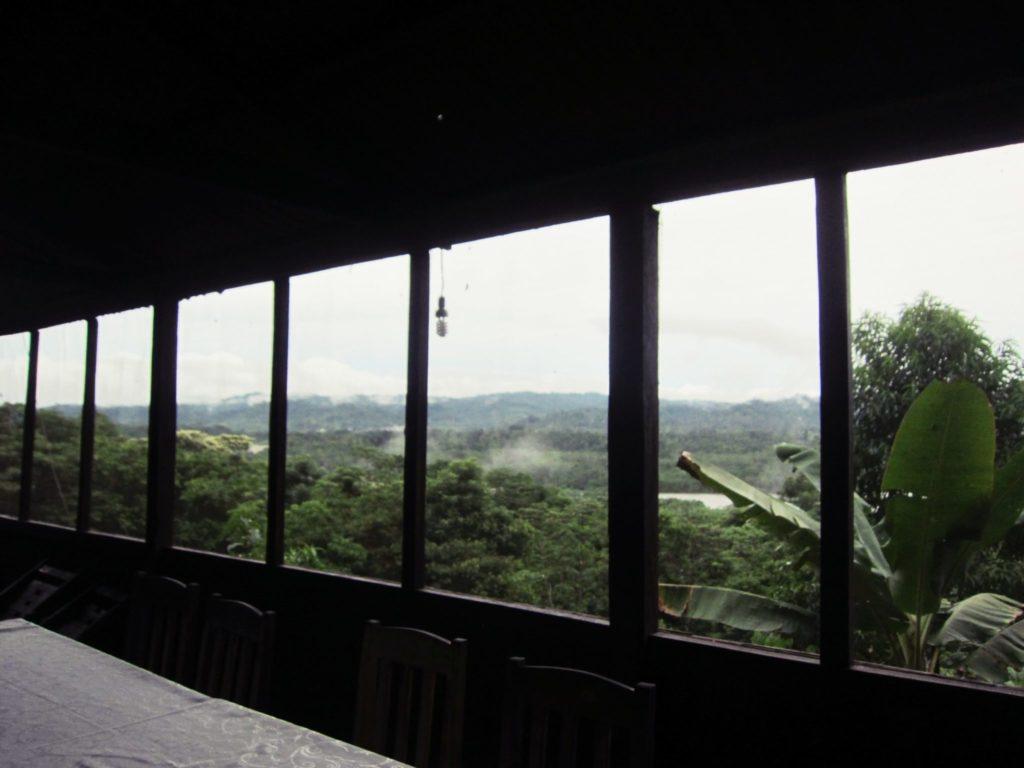 アマゾン, ジャングル, ペルー, マヌー, 国立公園, ツアー, Paititi, ロッジ