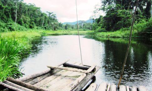アマゾン, ジャングル, ペルー, マヌー, 国立公園, ツアー, Cocha Machuhuasi