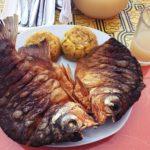 ペルー Quillabamba キヤバンバのジャングル料理レストラン El Punto Selvático
