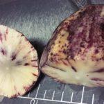 南米ペルーの芋!スーパーフード Yacón ヤコンは、まるで果物の食感!栄養、健康への効能、効果!ダイエットに最適!