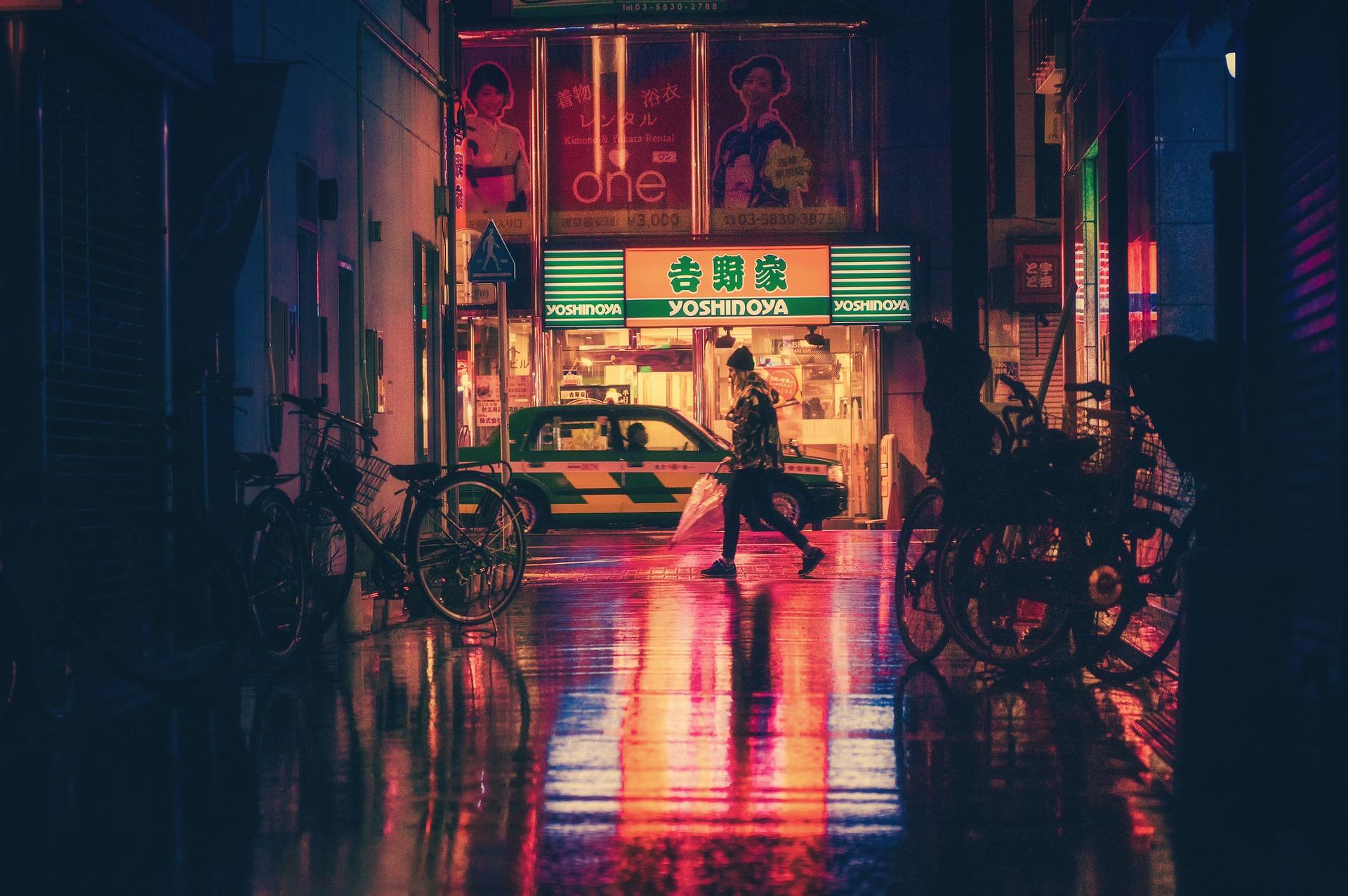 日本, 良い, 悪い, 一時帰国