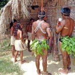南米ペルー・ジャングル・アマゾンの言語Awajúnアワフンの体の各部の単語
