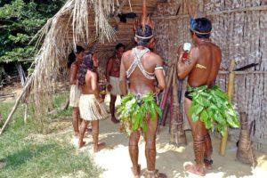 体, 南米, ペルー, ジャングル, アマゾン, 言語, Awajún, アワフン