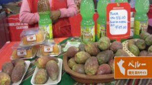 南米,ペルー,クスコ,アンデス, 季節,果物,フルーツ,サボテン,tuna