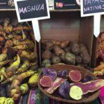 クスコの友人が教えてくれた南米ペルーのジャガイモの話