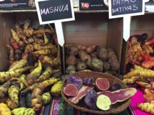 南米, ペルー, クスコ, アンデス, 季節, 野菜, ジャガイモ, papa